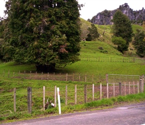 1. Before work began at Hobbit film site Piopio near Waitomo