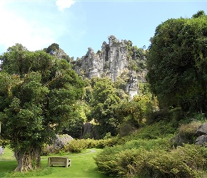 Denize limestone Bluffs NZ