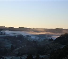 early morning mist Mangaotaki Valley Piopo