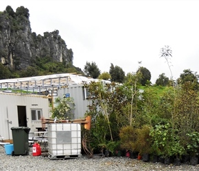 12. Extra plants at Tech Base to enrich Hobbit film sets Piopio Waitomo
