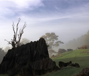 Denize Bluffs rock formations near Waitomo